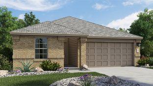 Roffee - Sage Meadows - Barrington Collection: Saint Hedwig, Texas - Lennar