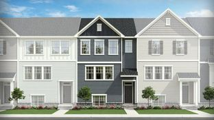 Rochester - Willows at Traditions: Wake Forest, North Carolina - Lennar