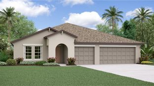 Phoenix - Ventana - The Executives: Riverview, Florida - Lennar