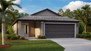 Albany - Copperspring - The Manors: New Port Richey, Florida - Lennar