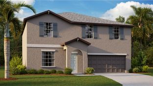 Providence - Copperspring - The Estates: New Port Richey, Florida - Lennar