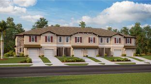 St. Thomas - Cypress Creek - The Maples Town Estates: Sun City Center, Florida - Lennar