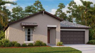 Dover - Spencer Creek - The Estates: Ruskin, Florida - Lennar