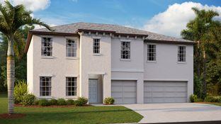 Olympia - Spencer Creek - The Executives: Ruskin, Florida - Lennar