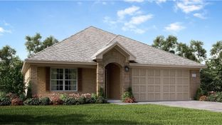 Clover - Ashbel Cove at Baytown Crossings - Wildflower Collection: Baytown, Texas - Lennar
