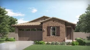 Palo Verde Plan 3519 - Northern Crossing - Arbor: Waddell, Arizona - Lennar