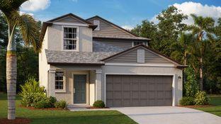 Columbia - Timber Creek - The Manors: Riverview, Florida - Lennar