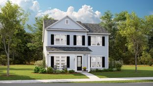 COOSAW - Summers Corner - The Village - Row Collection: Summerville, South Carolina - Lennar