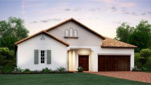 Halos - Medley at Mirada - The Estates: San Antonio, Florida - Lennar