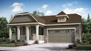 Oxford - Meadowbrook Heights - The Monarch Collection: Littleton, Colorado - Lennar