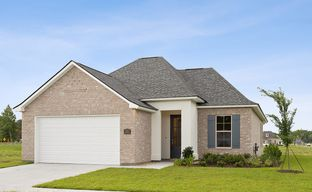 Arbor Crossing by Level Homes in Baton Rouge Louisiana