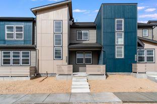 Hazel - The District at Victory Ridge: Colorado Springs, Colorado - Lokal Homes