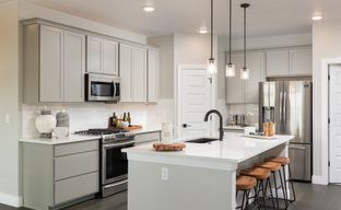 The Reserve at Registry Ridge by Lokal Homes in Fort Collins-Loveland Colorado