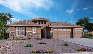 Dominic - Falcon View: Glendale, Arizona - Richmond American Homes