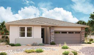 Alexandrite - Enclave at Pinelake: Chandler, Arizona - Richmond American Homes