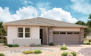 Enclave at Pinelake by Richmond American Homes in Phoenix-Mesa Arizona