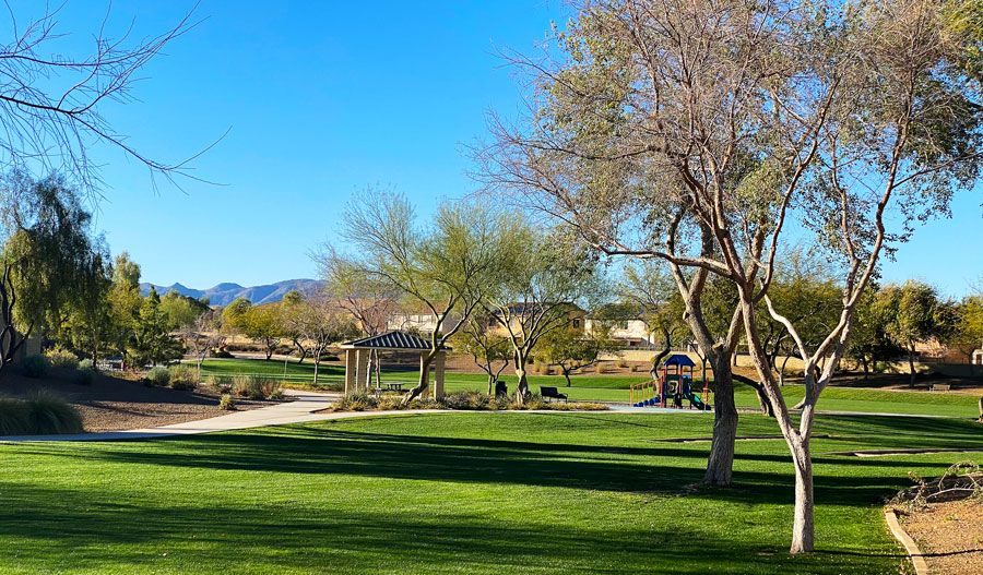 'White Tank Foothills' by Richmond American Homes - Phoenix in Phoenix-Mesa