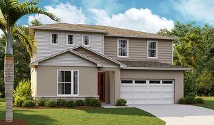 Ammolite - Seasons at Forest Lake: Davenport, Florida - Richmond American Homes