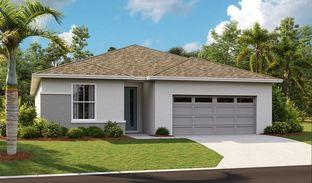 Slate - Seasons at Forest Lake: Davenport, Florida - Richmond American Homes