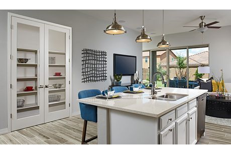 Kitchen-in-Onyx-at-BellaViva-in-Haines City