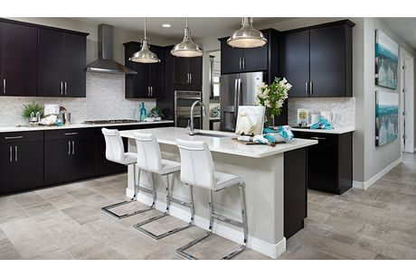 Kitchen-in-Raleigh-at-Crestfield Manor-in-Florence