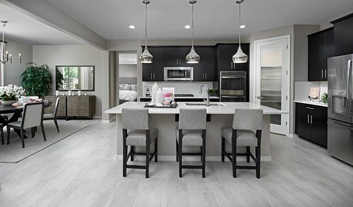 Kitchen-in-Darius-at-Dominion at Greer Ranch-in-Surprise