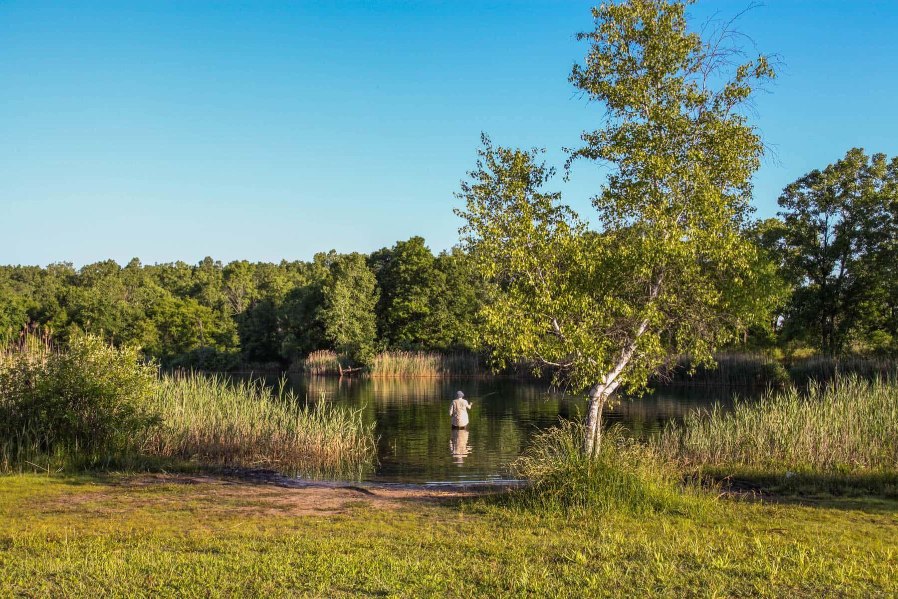 'Green Oak Crossing' by M/I Homes-Michigan in Ann Arbor