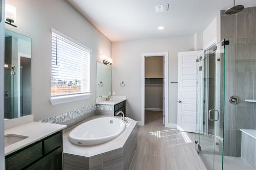 Bathroom-in-Channing-at-Paloma Lake-in-Round Rock