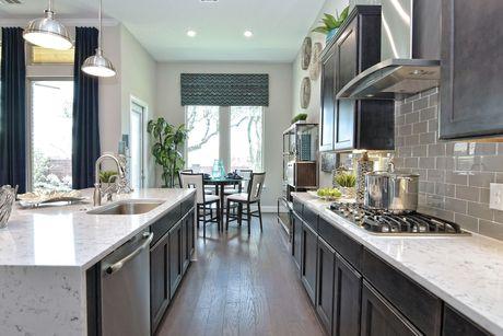 Kitchen-in-Osprey II-at-Regent Park-in-Boerne