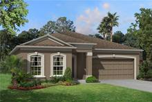 30934 Parrot Reef Court (Marque)