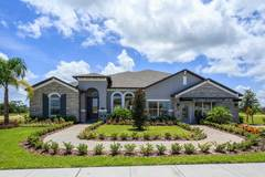 17675 Sailfin Drive (Brookhaven Fl)