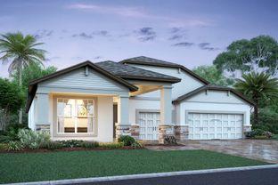 Corina II - Hideaway Cove: Oviedo, Florida - M/I Homes