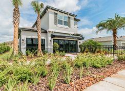 Castellana - Morris Bridge Manors: Tampa, Florida - M/I Homes
