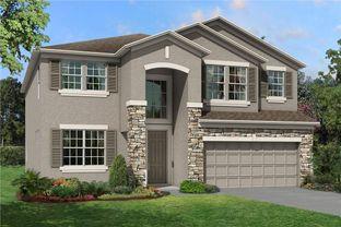 Mira Lago - Morris Bridge Manors: Tampa, Florida - M/I Homes