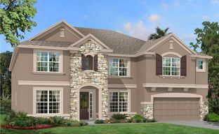 Watergrass by M/I Homes in Tampa-St. Petersburg Florida