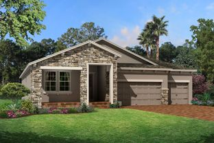 Corina  III - Starkey Ranch Albritton Park: Odessa, Florida - M/I Homes