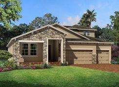 Corina  III Bonus - Starkey Ranch Albritton Park: Odessa, Florida - M/I Homes