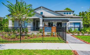 Starkey Ranch Albritton Park by M/I Homes in Tampa-St. Petersburg Florida