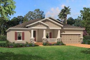 Kendall - Starkey Ranch Albritton Park: Odessa, Florida - M/I Homes