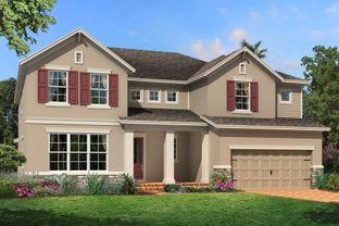 Palazzo - Starkey Ranch Albritton Park: Odessa, Florida - M/I Homes