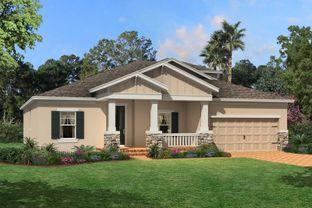 Roxbury - Starkey Ranch Albritton Park: Odessa, Florida - M/I Homes
