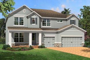 Santina II - Starkey Ranch Albritton Park: Odessa, Florida - M/I Homes