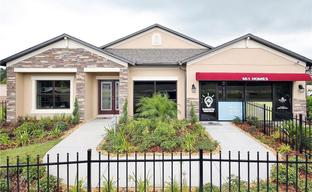 Talavera by M/I Homes in Tampa-St. Petersburg Florida