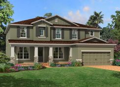 Regency - Starkey Ranch Albritton Park: Odessa, Florida - M/I Homes