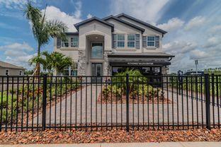 Sonoma II - Ehrens Mill: Land O' Lakes, Florida - M/I Homes