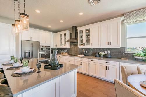 Kitchen-in-Corina  III Bonus-at-TerraLargo - Executive-in-Lakeland