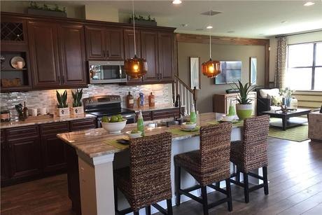 Kitchen-in-Devonshire II-at-Long Lake Ranch-in-Lutz
