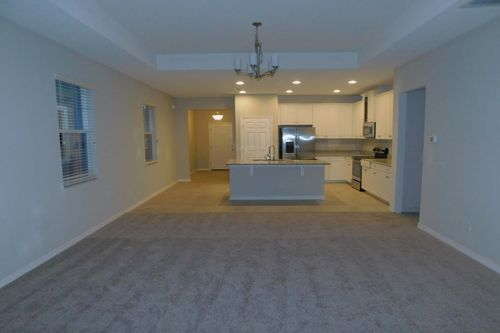 Empty-in-Picasso Bonus-at-Southfork Lakes-in-Riverview