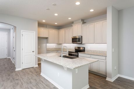 Kitchen-in-Santa Maria (ecl)-at-Econ Landing-in-Orlando