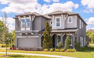 Carrollwood Landings by Mobley Homes in Tampa-St. Petersburg Florida